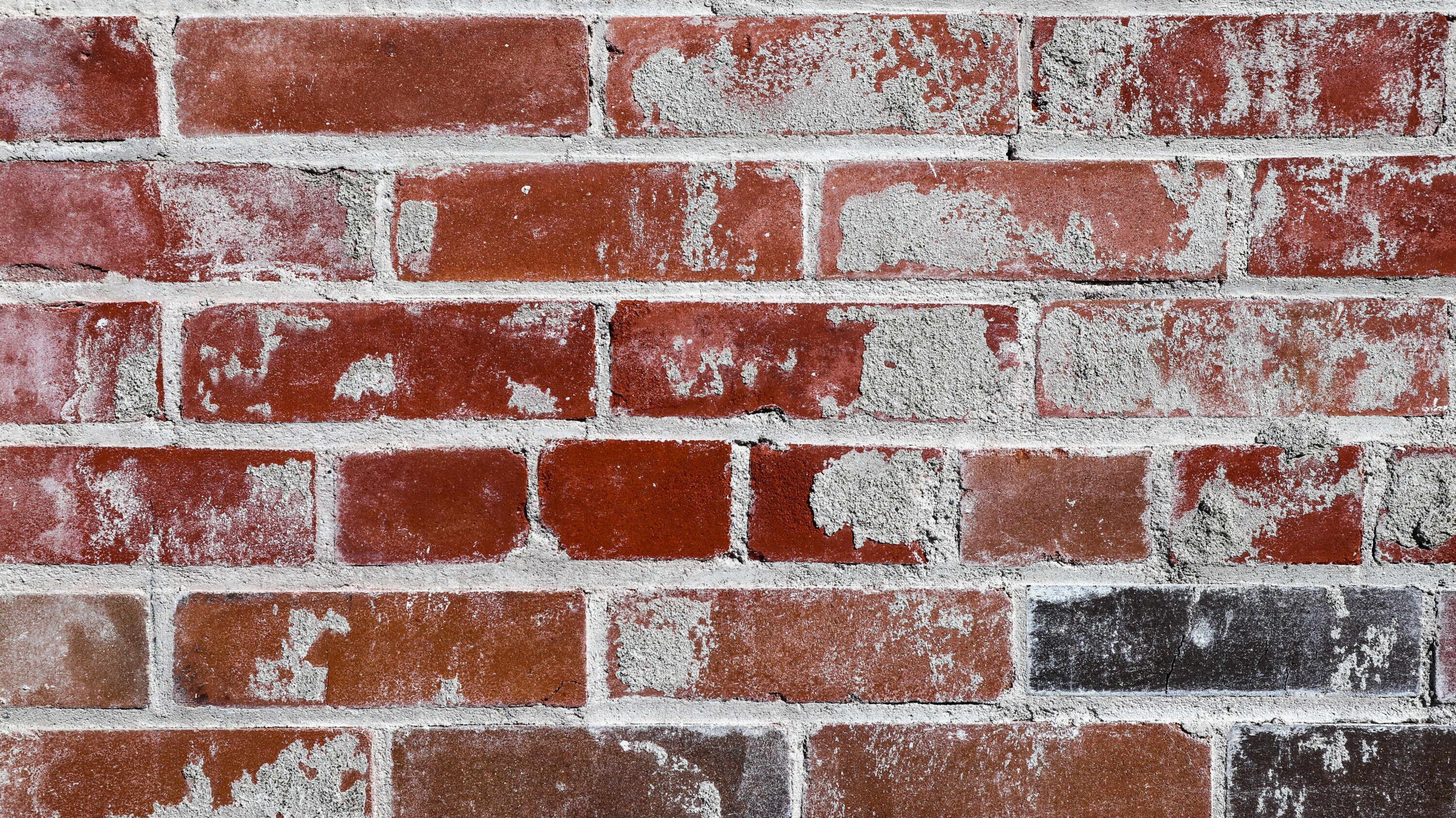 tuckpointing and repointing